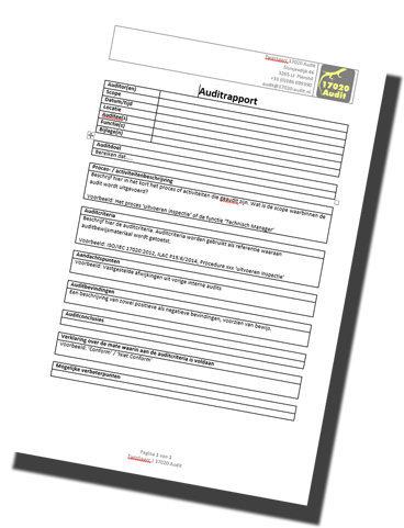 audit-rapport